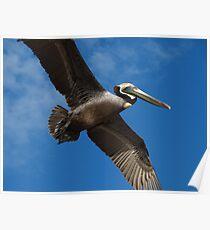 I'm Flying Like A Bird Through The Sky - Estoy Volando Como Un Pajaro En El Cielo Poster