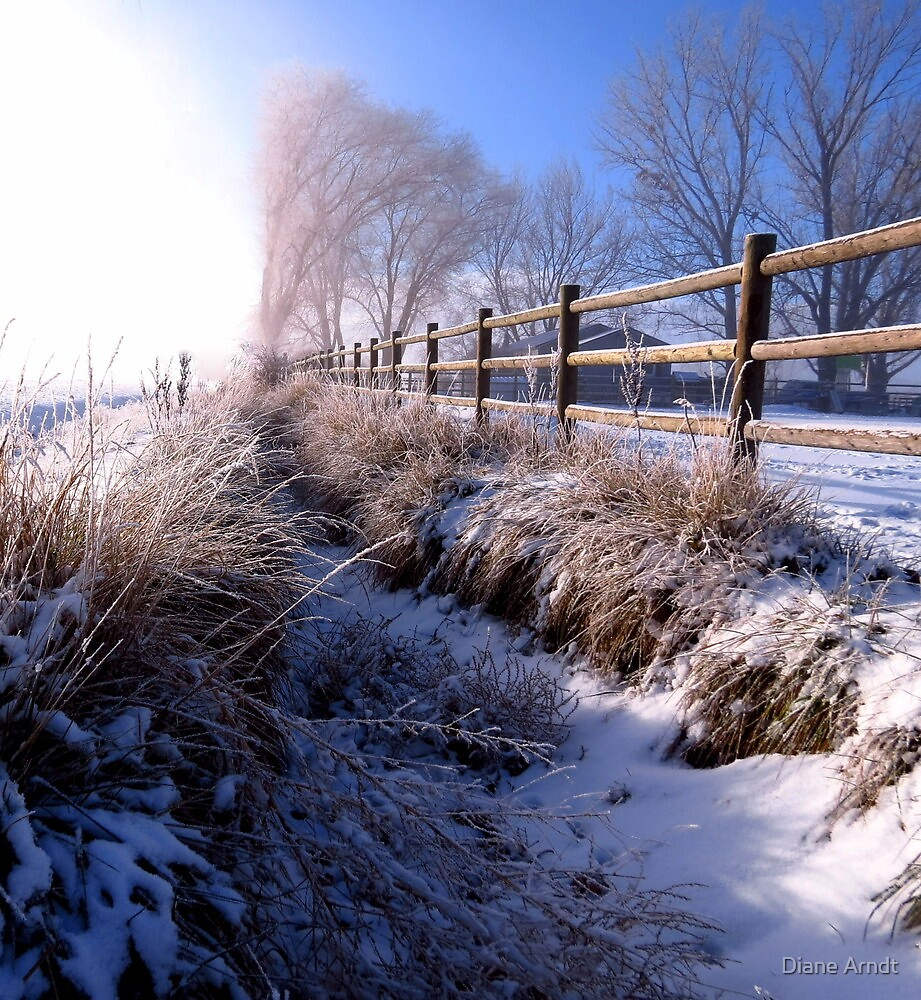 A Dusting of Snow In Our Irrigation Ditch by Diane Arndt