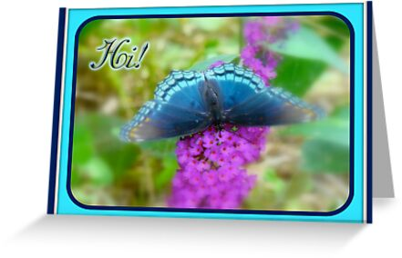 Hi Hello Greeting Card - Red Spotted Purple Butterfly by MotherNature2