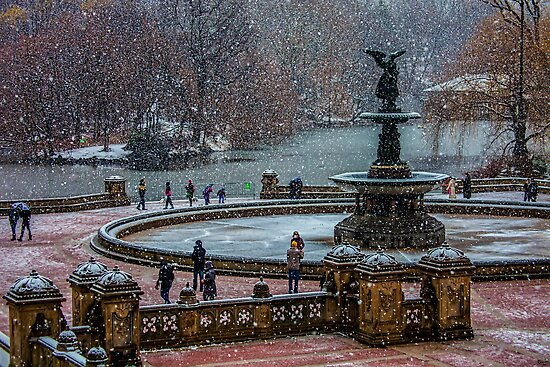 Central Park, The 30 Minute Snow Storm by Chris Lord