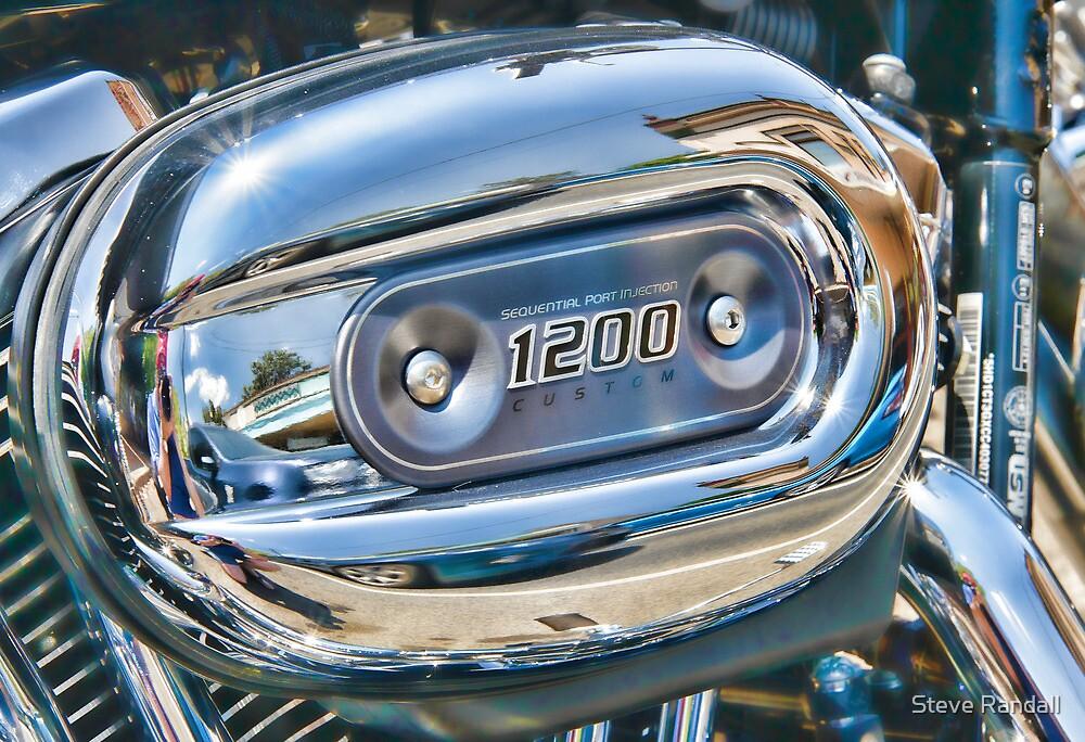 1200 Custom Harley by Steve Randall
