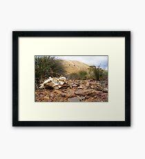 Cow Bone Creek Bed, Kangaroo Island Framed Print