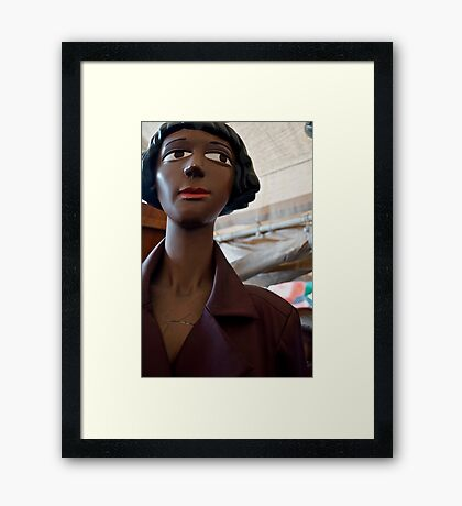 Brown Beauty Framed Print