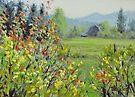 Yellow Broom Spring by Karen Ilari