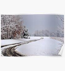 Southern Illinois Winter Scene 6_ Dec 2012 Poster
