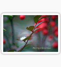 Berry Merry Christmas Sticker