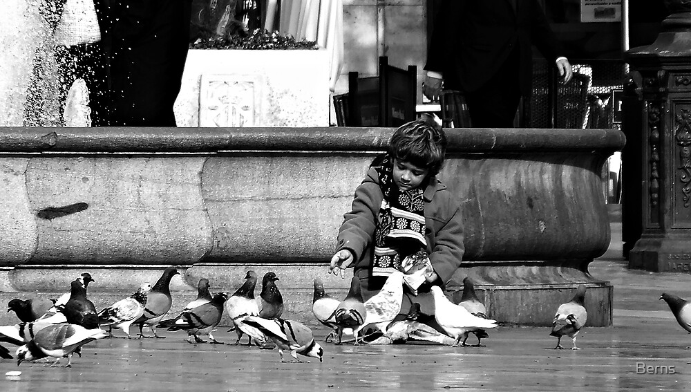 Away with The Birds by Berns
