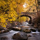 Autumn Crossing (Vertical) by David Kocherhans