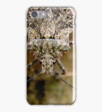 Stink Bug iPhone Case/Skin