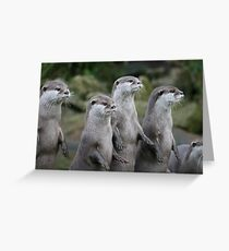 The Four Otts Greeting Card