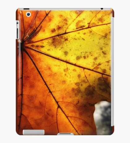 Letter Dropt From God? iPad Case/Skin