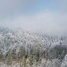a winter day panoramic by dc witmer