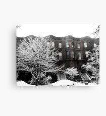 Brooklyn Winter Canvas Print