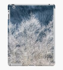 Frosted Trees iPad Case/Skin