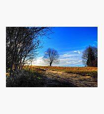 Nature Dreams Photographic Print