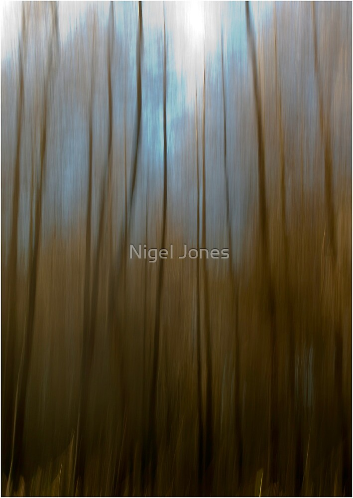 If You Go Down in the Woods today... by Nigel Jones