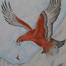 golden eagle by Gez Sullivan