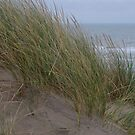 Camber Sands to Le Touquet by seymourpics