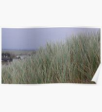 Camber Sands to Romney Marsh Poster