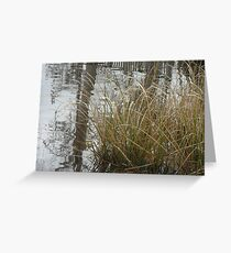 waccamaw river :) Greeting Card