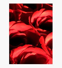 Love and Roses Photographic Print