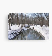 Another Snowy River Scene Canvas Print