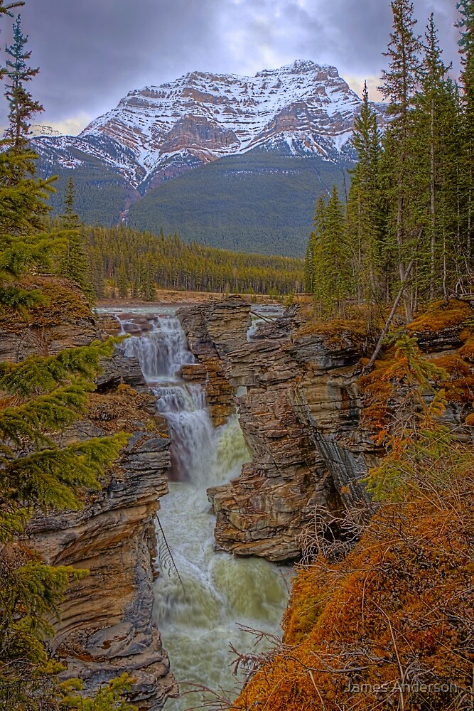 Athabasca Falls by James Anderson