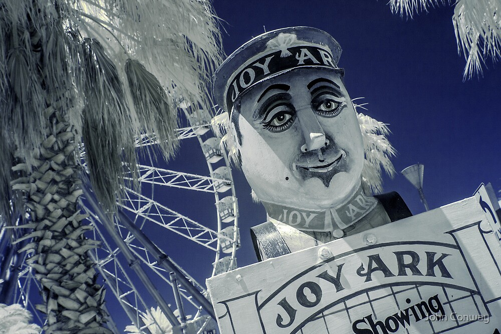 Joy Ark by John Conway
