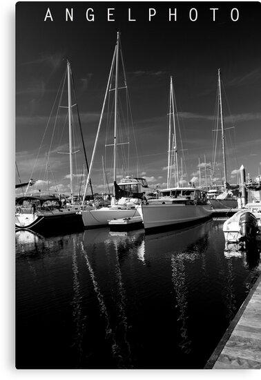 City Marina  by Wendy Mogul