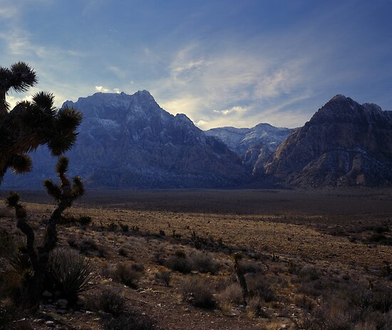 Red Rock Canyon National Conservation Area, Nevada by Rodney Johnson