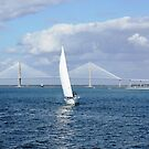 Charleston Harbor by Darlene Lankford Honeycutt