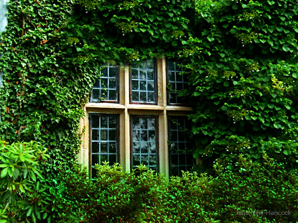 Ivy Engulfs the Manor As Ghostly Images Peak Out  by Jane Neill-Hancock