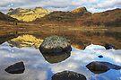 Blea Tarn,Jewel Of The Lakes by Jamie  Green