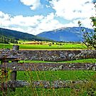Weathered Fence in the Austrian Alps. by Lee d'Entremont