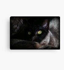 Sneak Attack Canvas Print