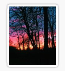 Rural sunset with trees Sticker