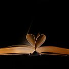 love book by Gasparedes