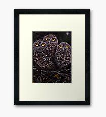 3 Owls Framed Print