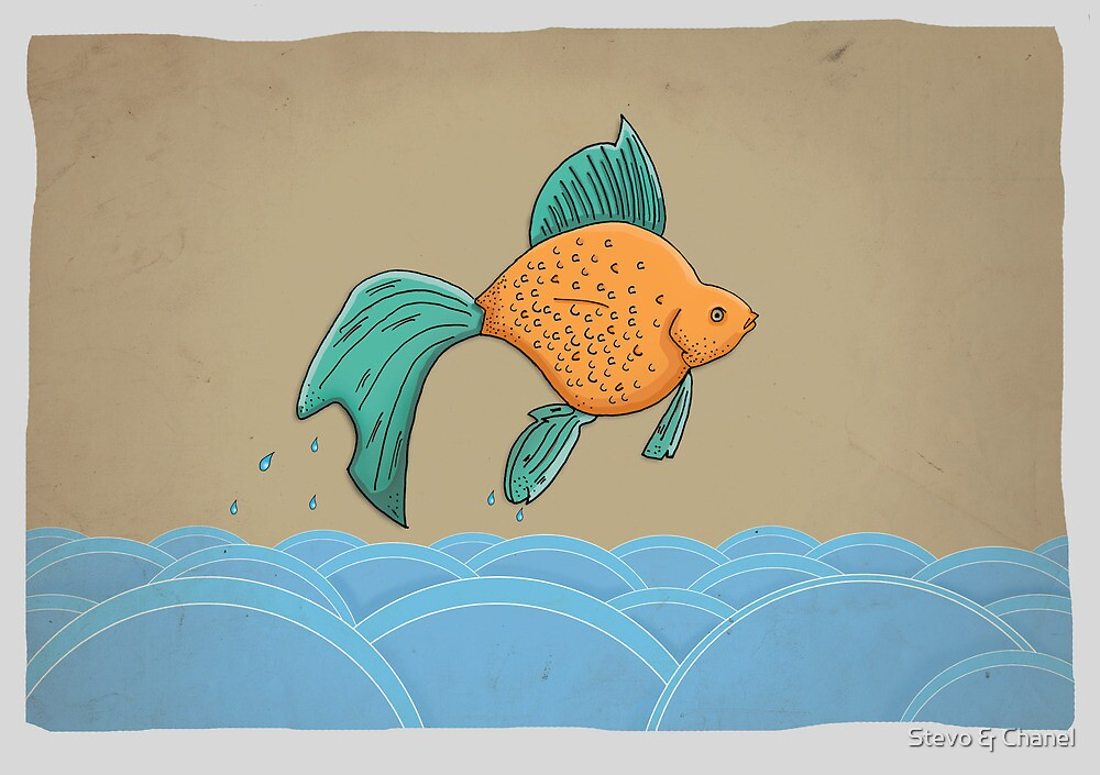 Fish out of Water by Stevo & Chanel