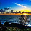 A POMPANO SUNSET,BERMUDA by buddybetsy