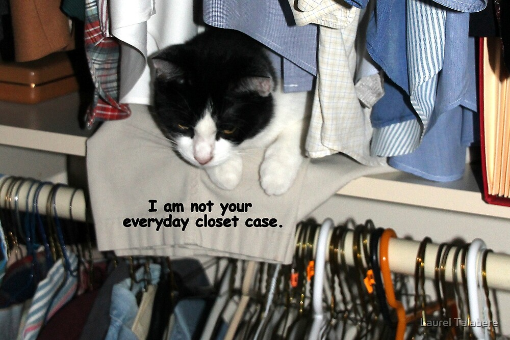 Not your everyday closet case! by Laurel Talabere