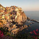Manarola, Italy by fionatherese