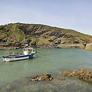 Port Isaac, England by fionatherese