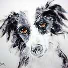 Collie by Kay Clark