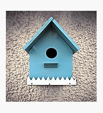birdhouse in your soul Photographic Print