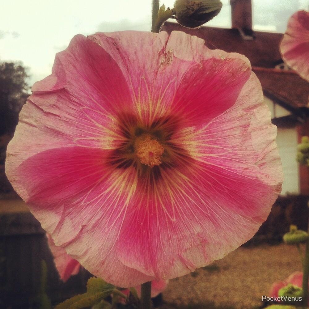 Flower Power by PocketVenus