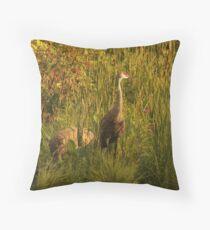 Sandhill Cranes on shore of Lake Throw Pillow