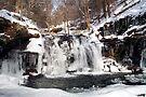 Wyandot Falls & Winter Ice by Gene Walls