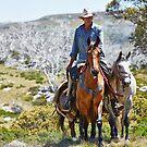 A Snowys' Horseman by Mark  Lucey