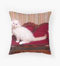 White Flamepoint Ragdoll Kitten on Queen Anne Sofa Throw Pillow